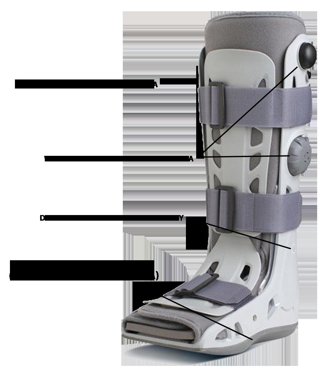stabilizator, orteza kolana, stawu kolanowego